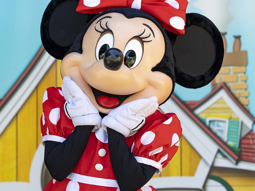 Disneyland Paris Portfolio